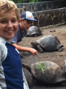 Trent at the Galapagos Tortoise Breeding Center